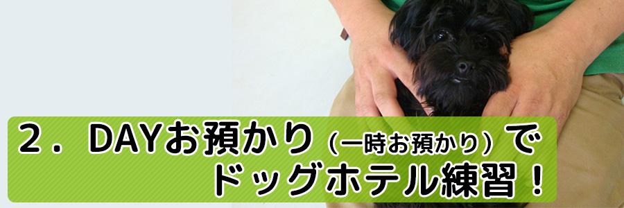 2.デイお預かり(一時預かり)でドッグホテル(ペットホテル)練習!