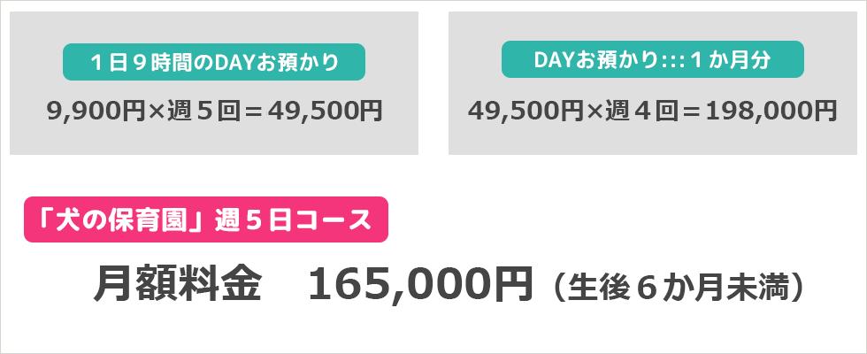 犬の保育園週5日コースなら 月額料金 165,000円(生後6か月未満)