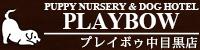 中目黒店 PLAYBOW NAKAMEGURO