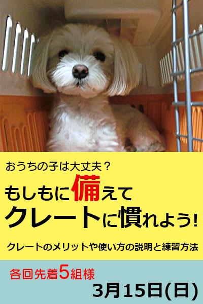 ご愛犬と一緒に楽しめるイベント情報