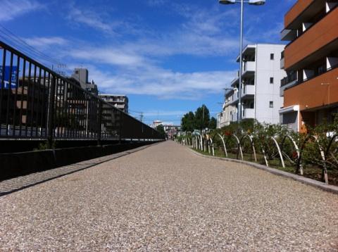 向ヶ丘遊園店の前の遊歩道